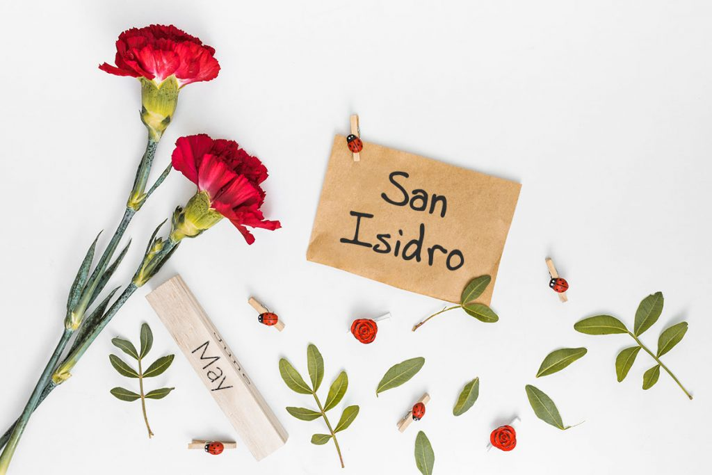 San isidro in Madrid for beginners